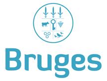 CCAS de Bruges